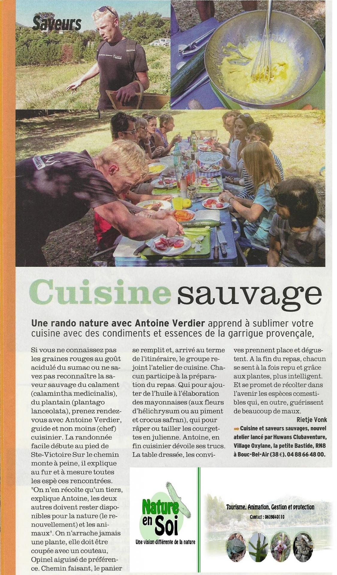 Article femina cuisine sauvage 2